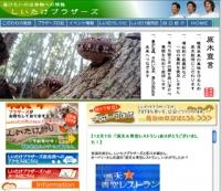 shiitake_web.jpg